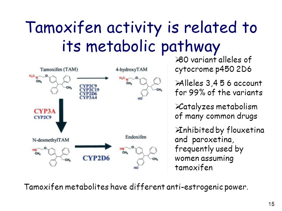 Tamoxifen activity is related to its metabolic pathway