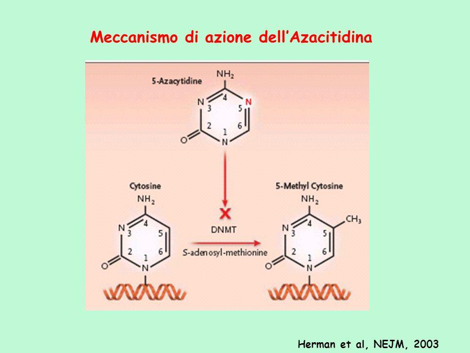 Meccanismo di azione dell'Azacitidina