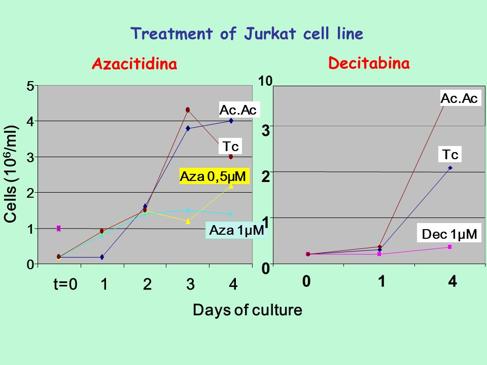 Treatment of Jurkat cell line