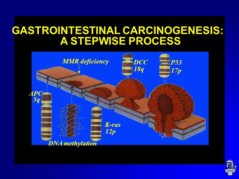 GASTROINTESTINAL CARCINOGENESIS: