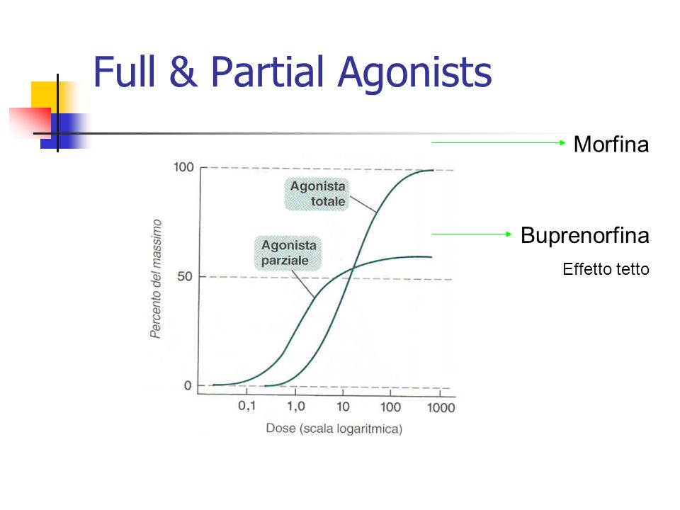 Full & Partial Agonists