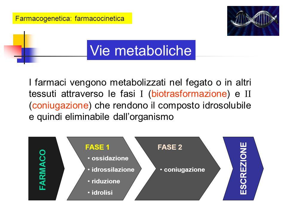 Farmacogenetica: farmacocinetica