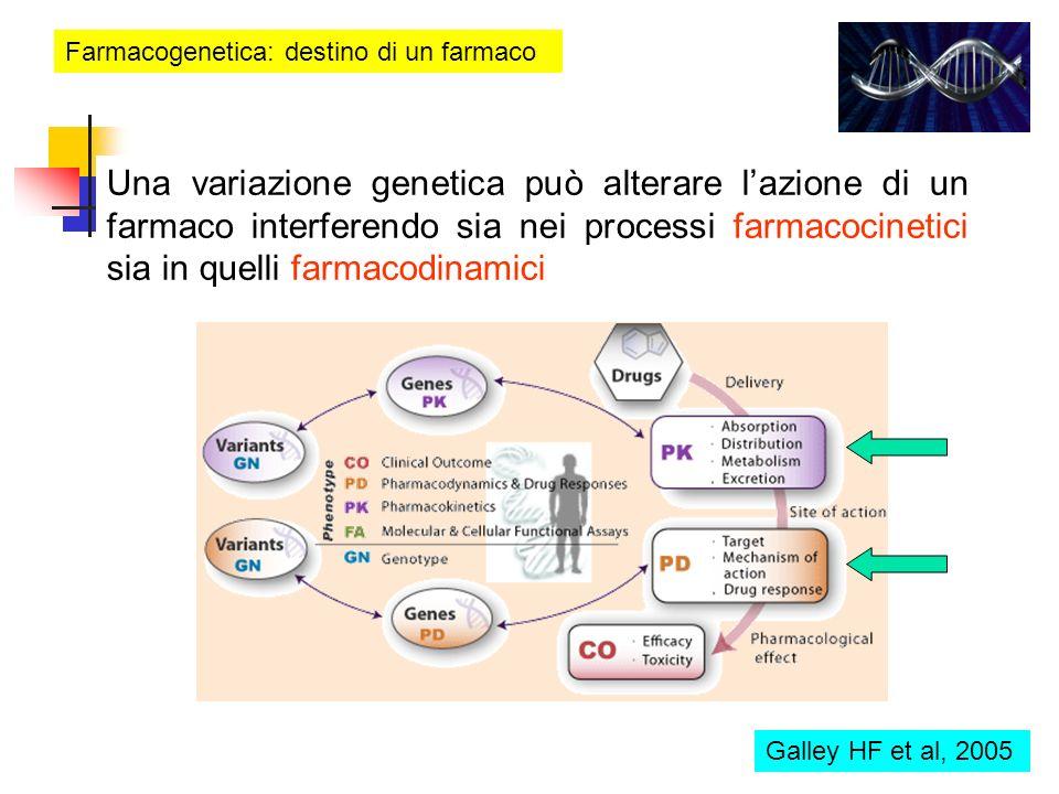Farmacogenetica: destino di un farmaco