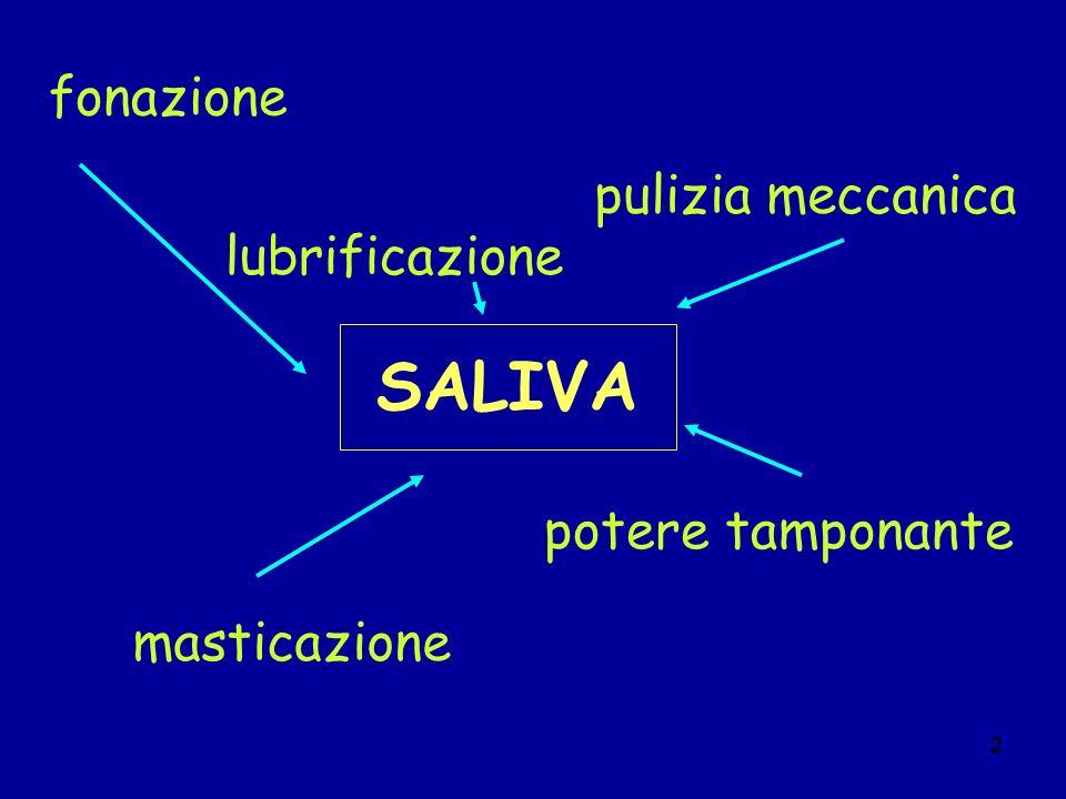 SALIVA fonazione pulizia meccanica lubrificazione potere tamponante