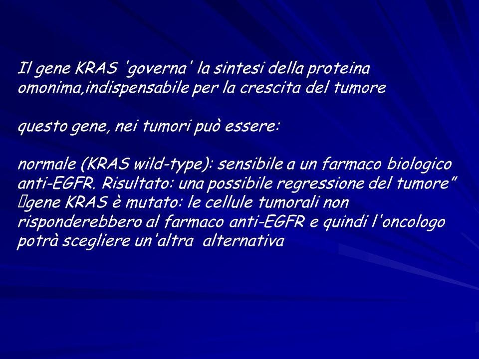 Il gene KRAS governa la sintesi della proteina omonima,indispensabile per la crescita del tumore