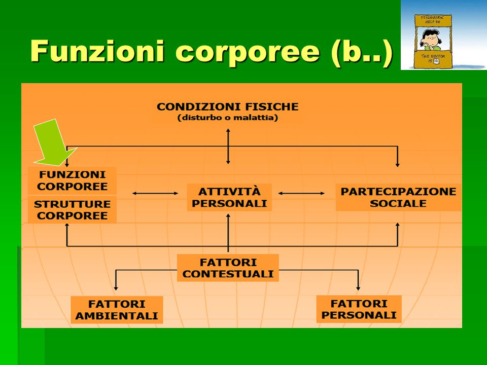 Funzioni corporee (b..)