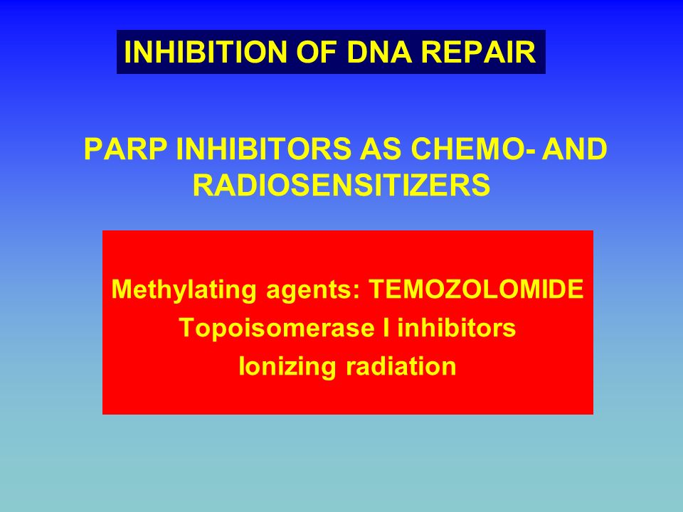 PARP INHIBITORS AS CHEMO- AND RADIOSENSITIZERS