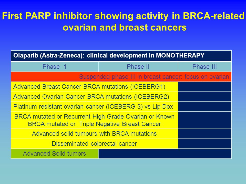 First PARP inhibitor showing activity in BRCA-related