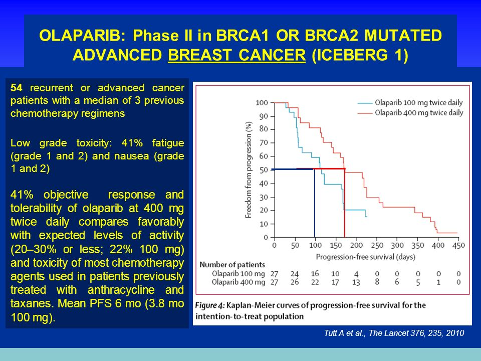 OLAPARIB: Phase II in BRCA1 OR BRCA2 MUTATED ADVANCED BREAST CANCER (ICEBERG 1)