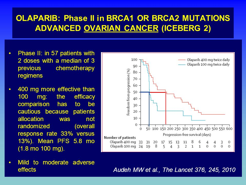 OLAPARIB: Phase II in BRCA1 OR BRCA2 MUTATIONS ADVANCED OVARIAN CANCER (ICEBERG 2)