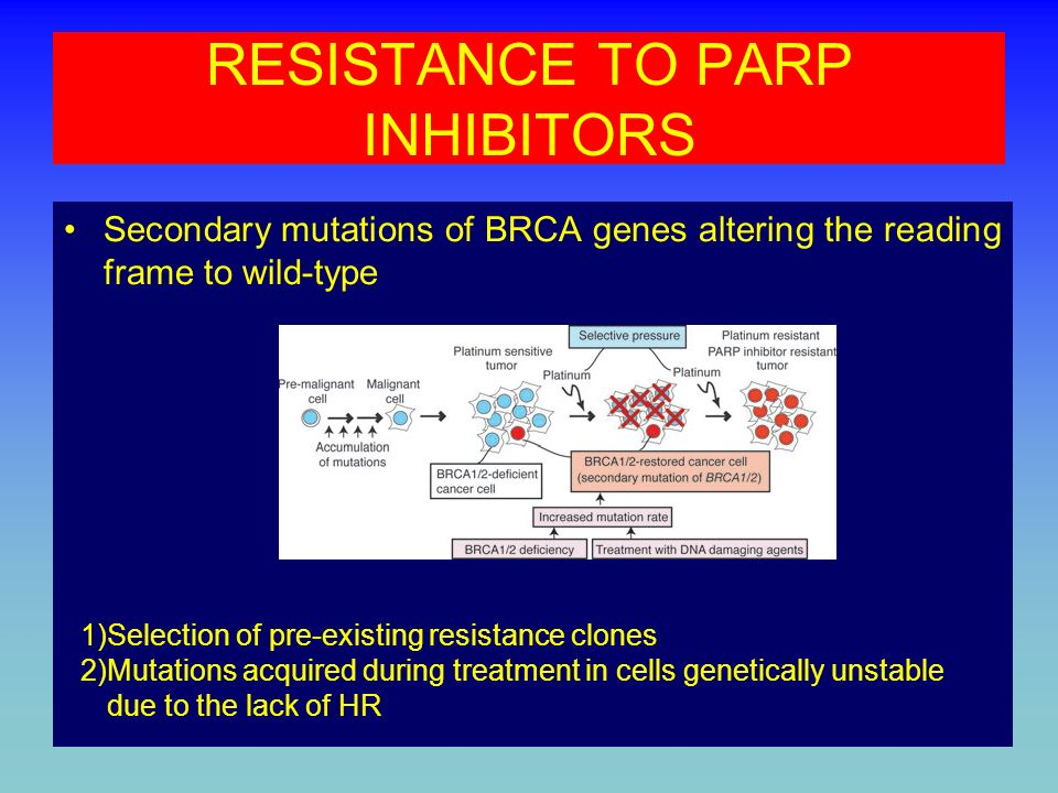 RESISTANCE TO PARP INHIBITORS