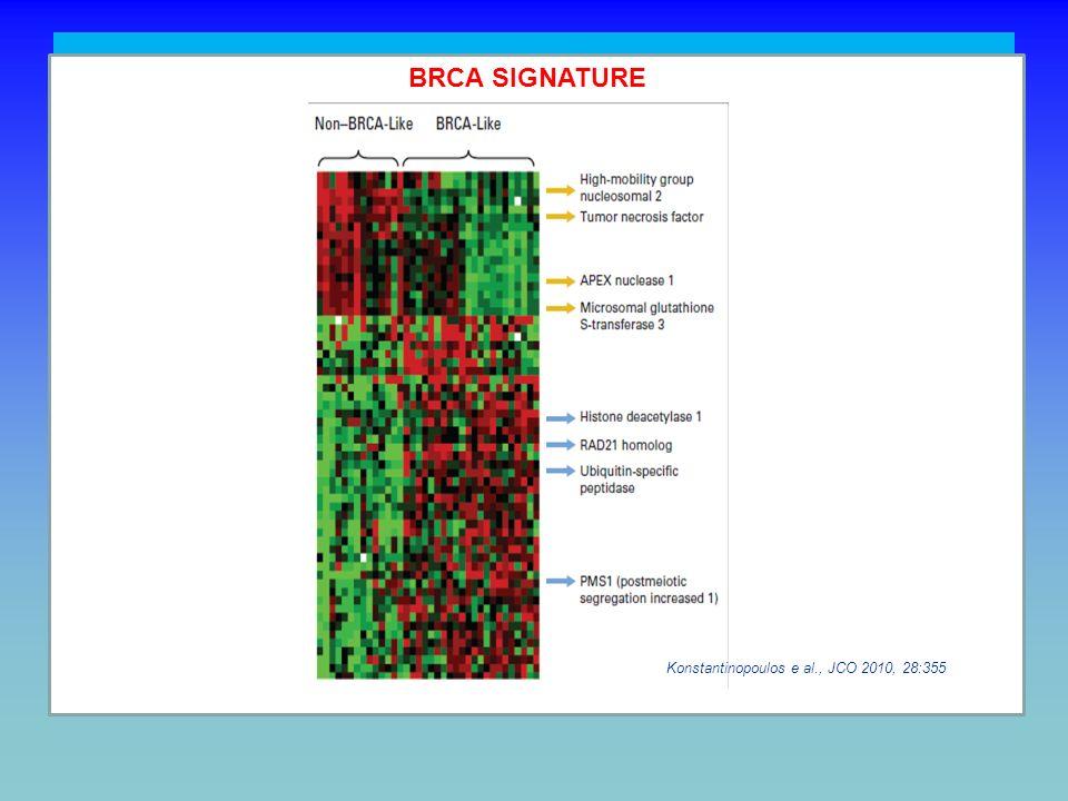 CHALLENGING TASKS BRCA SIGNATURE. Konstantinopoulos e al., JCO 2010, 28:355.