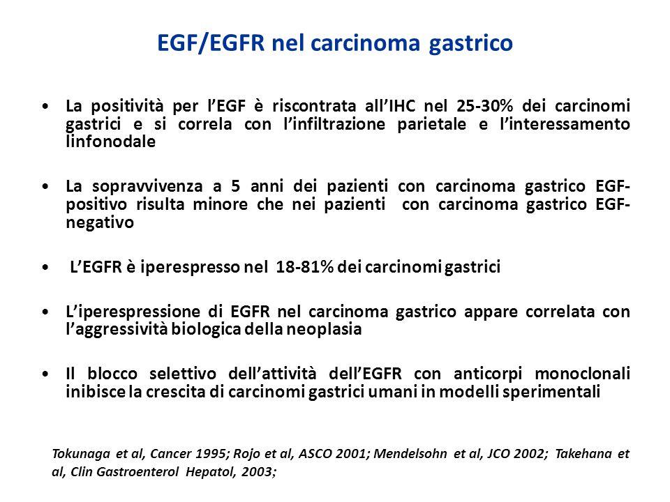 EGF/EGFR nel carcinoma gastrico
