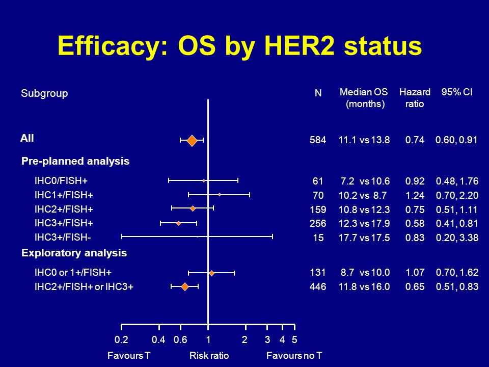 Efficacy: OS by HER2 status