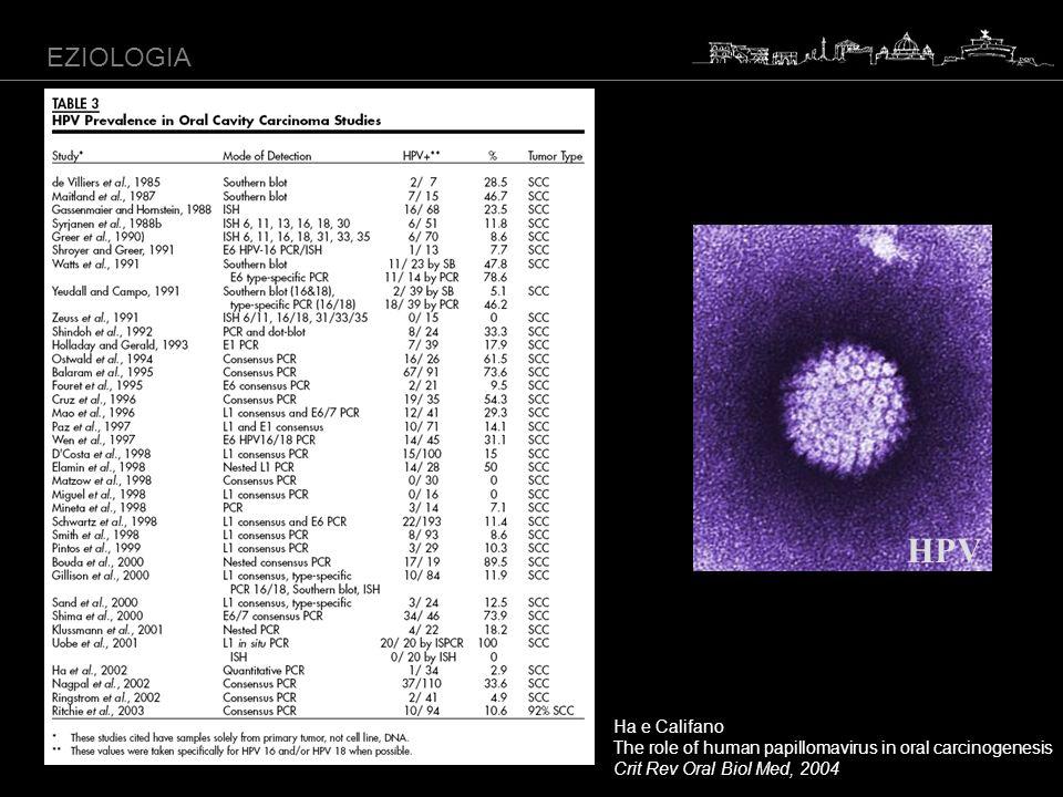 HPV EZIOLOGIA Ha e Califano