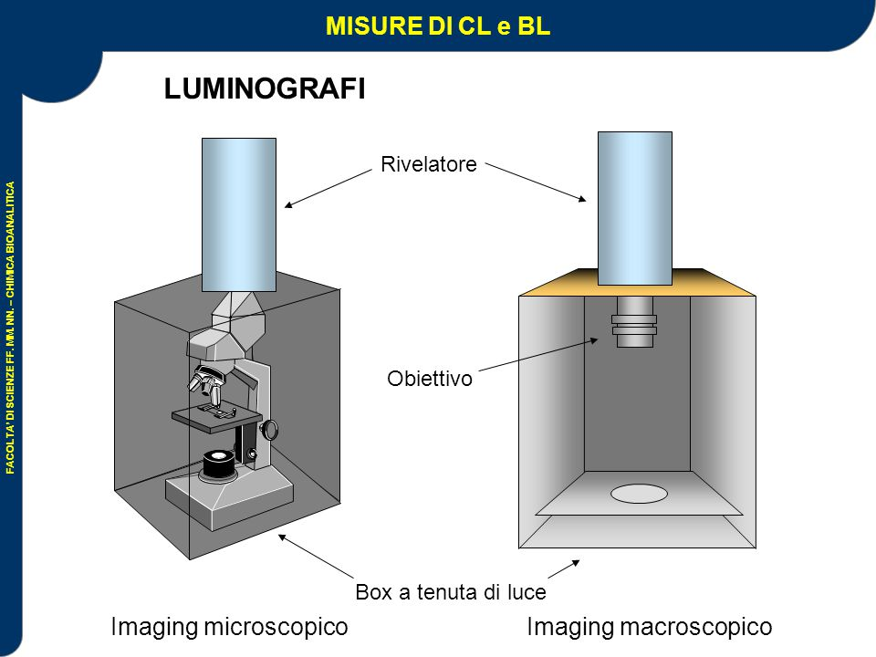 Imaging microscopico Imaging macroscopico