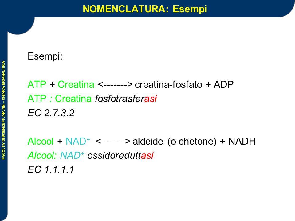 NOMENCLATURA: Esempi Esempi: ATP + Creatina <-------> creatina-fosfato + ADP. ATP : Creatina fosfotrasferasi.