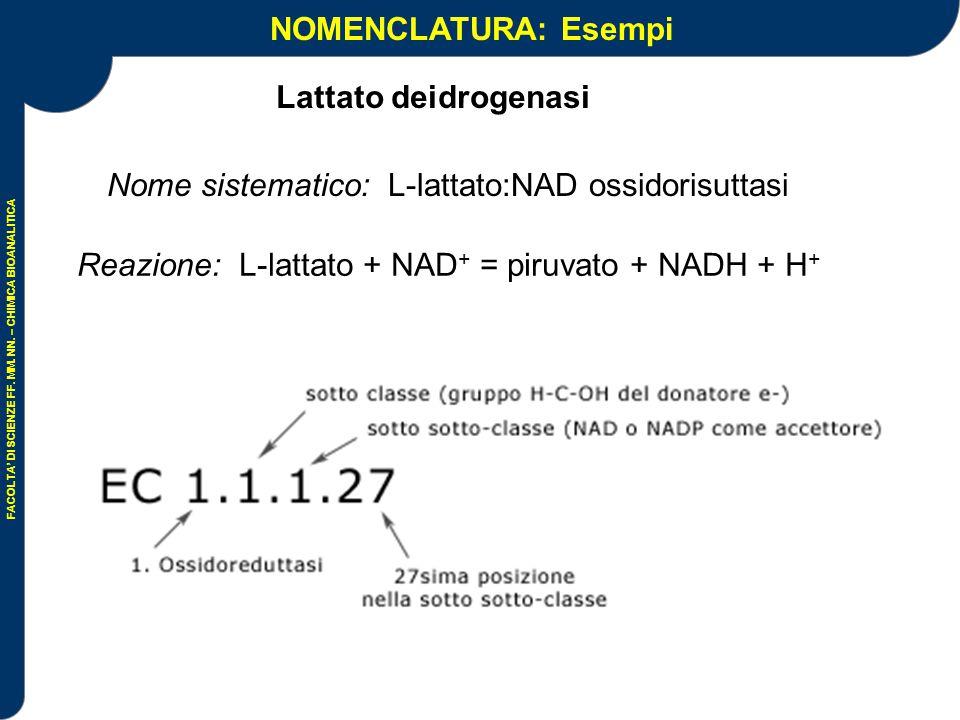 NOMENCLATURA: Esempi Lattato deidrogenasi
