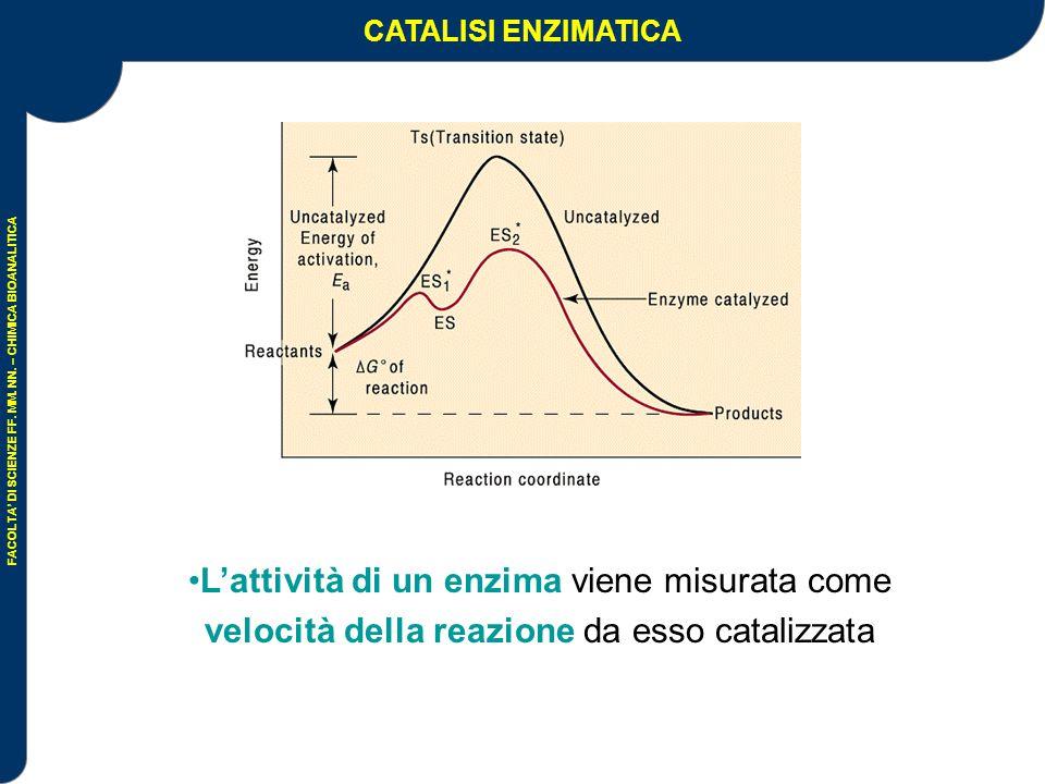 CATALISI ENZIMATICA L'attività di un enzima viene misurata come velocità della reazione da esso catalizzata.