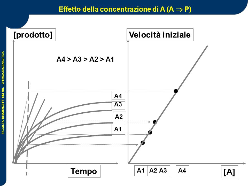 Effetto della concentrazione di A (A  P)