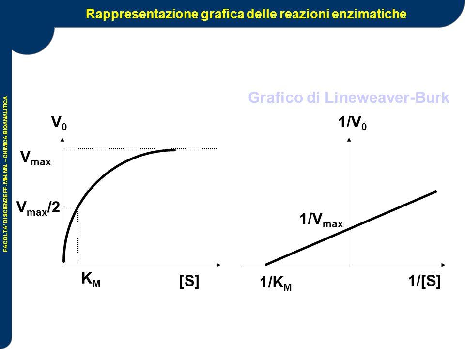 Rappresentazione grafica delle reazioni enzimatiche