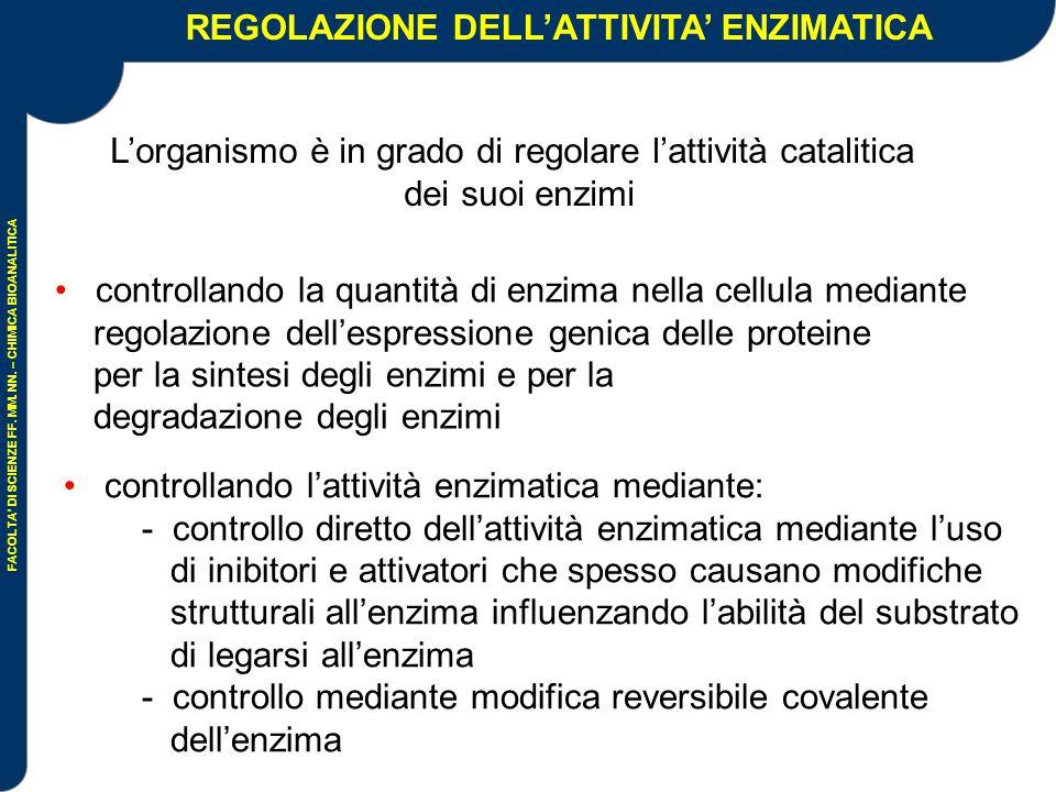 REGOLAZIONE DELL'ATTIVITA' ENZIMATICA