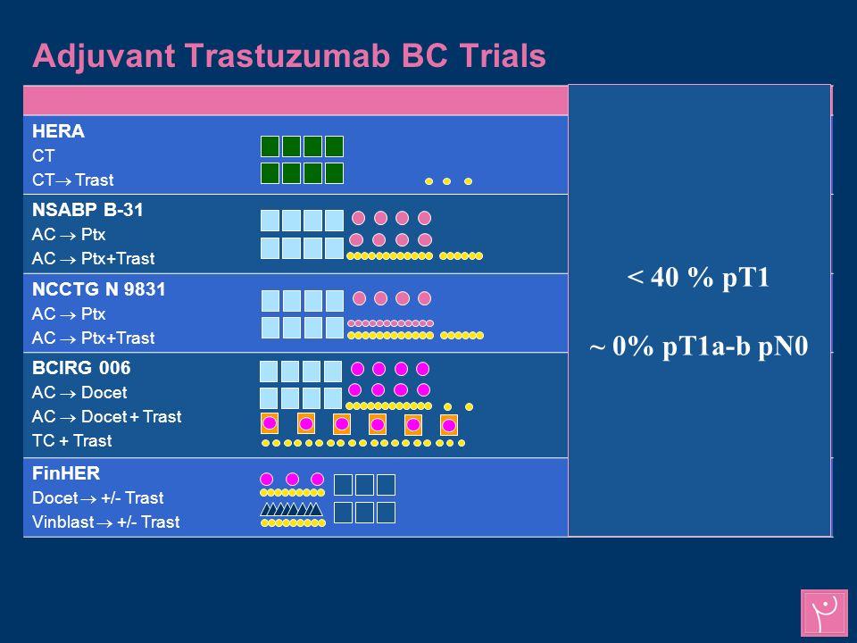 Adjuvant Trastuzumab BC Trials