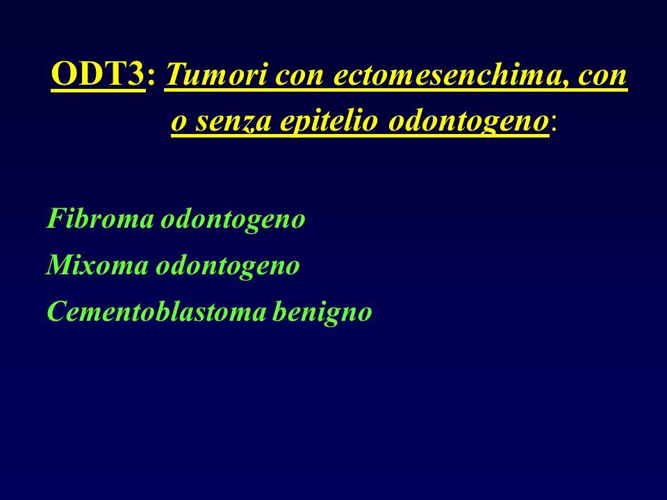 ODT3: Tumori con ectomesenchima, con