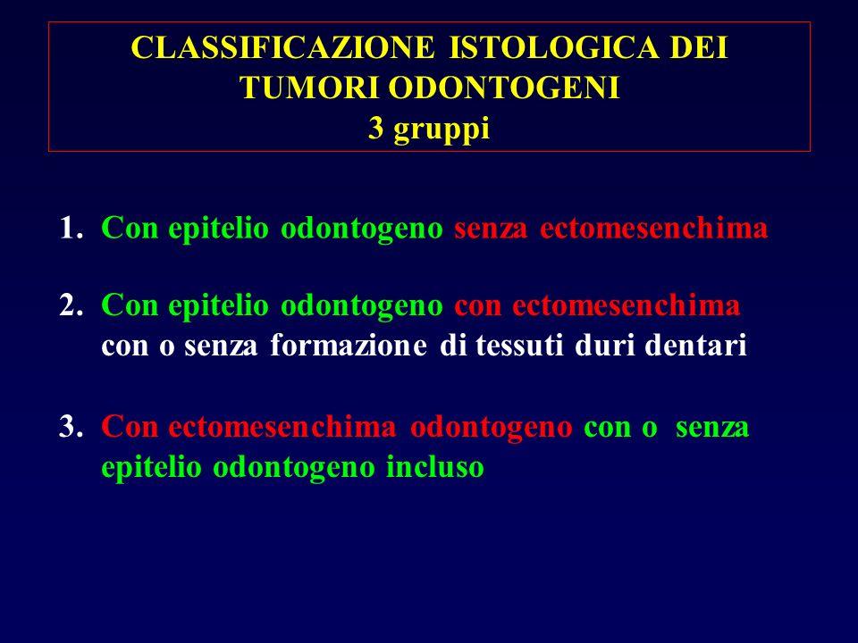 CLASSIFICAZIONE ISTOLOGICA DEI TUMORI ODONTOGENI
