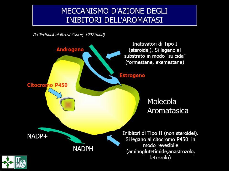 MECCANISMO D AZIONE DEGLI INIBITORI DELL AROMATASI
