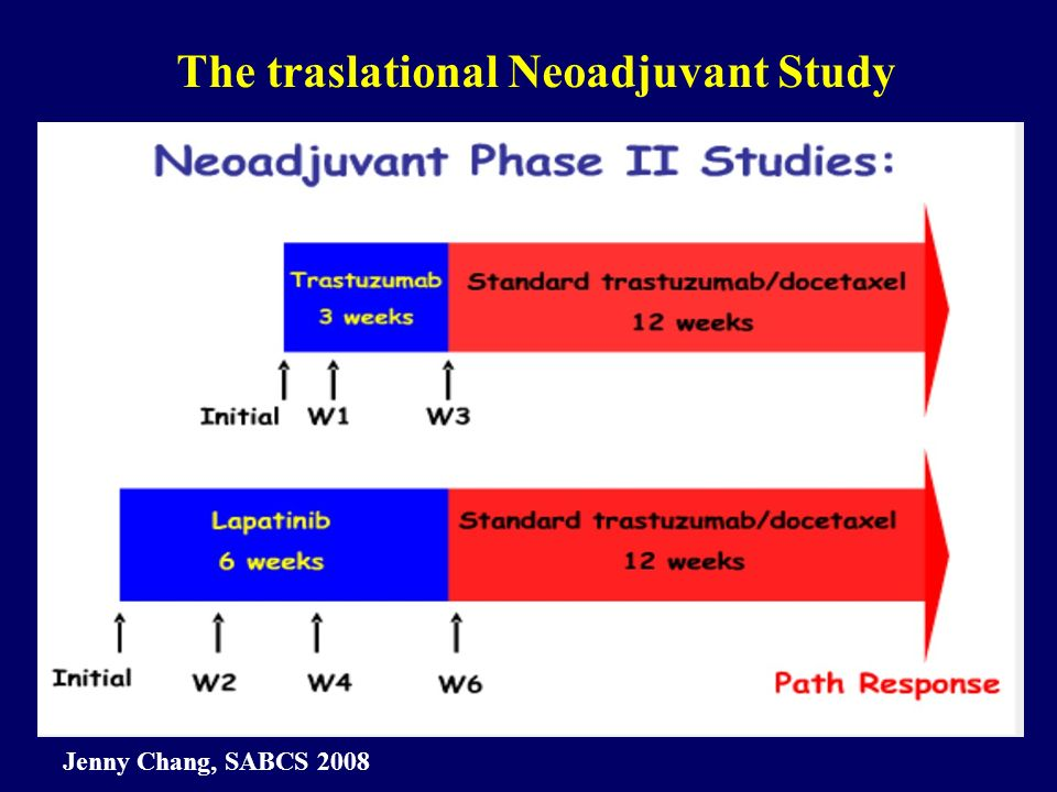 The traslational Neoadjuvant Study