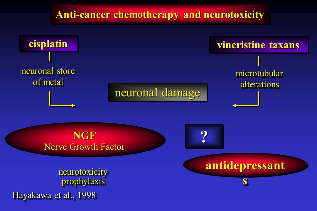 neuronal damage antidepressants