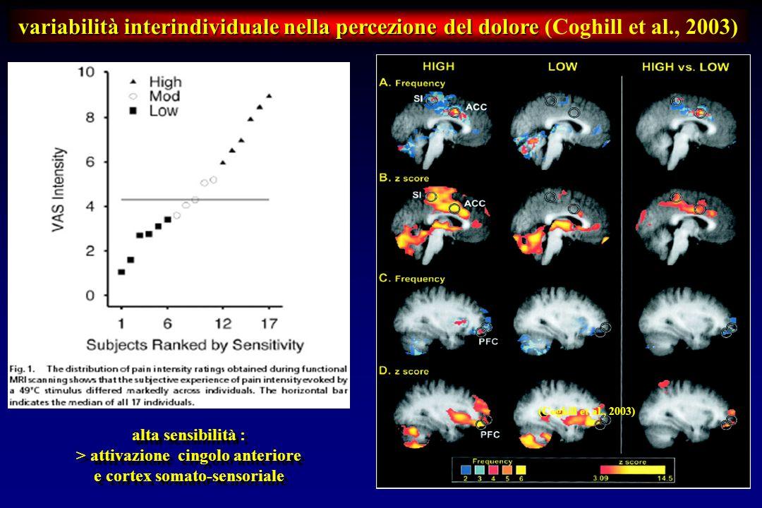 > attivazione cingolo anteriore e cortex somato-sensoriale