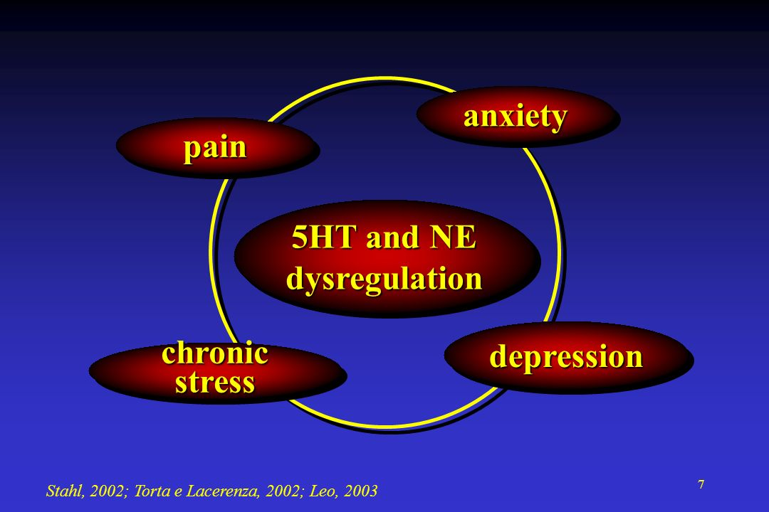 anxiety pain 5HT and NE dysregulation depression chronic stress