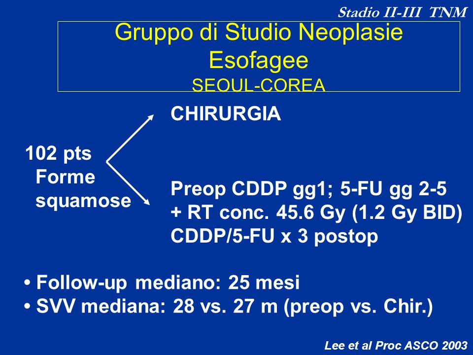 Gruppo di Studio Neoplasie Esofagee SEOUL-COREA