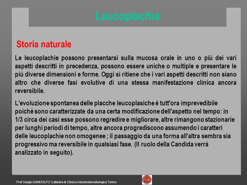 Leucoplachia Storia naturale