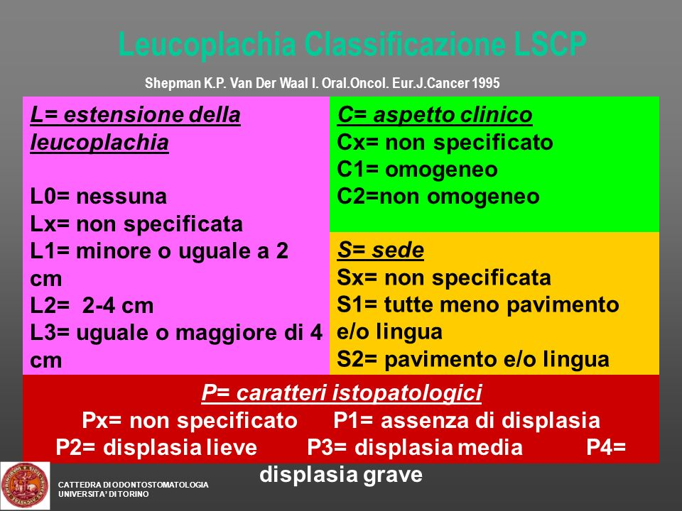 Leucoplachia Classificazione LSCP