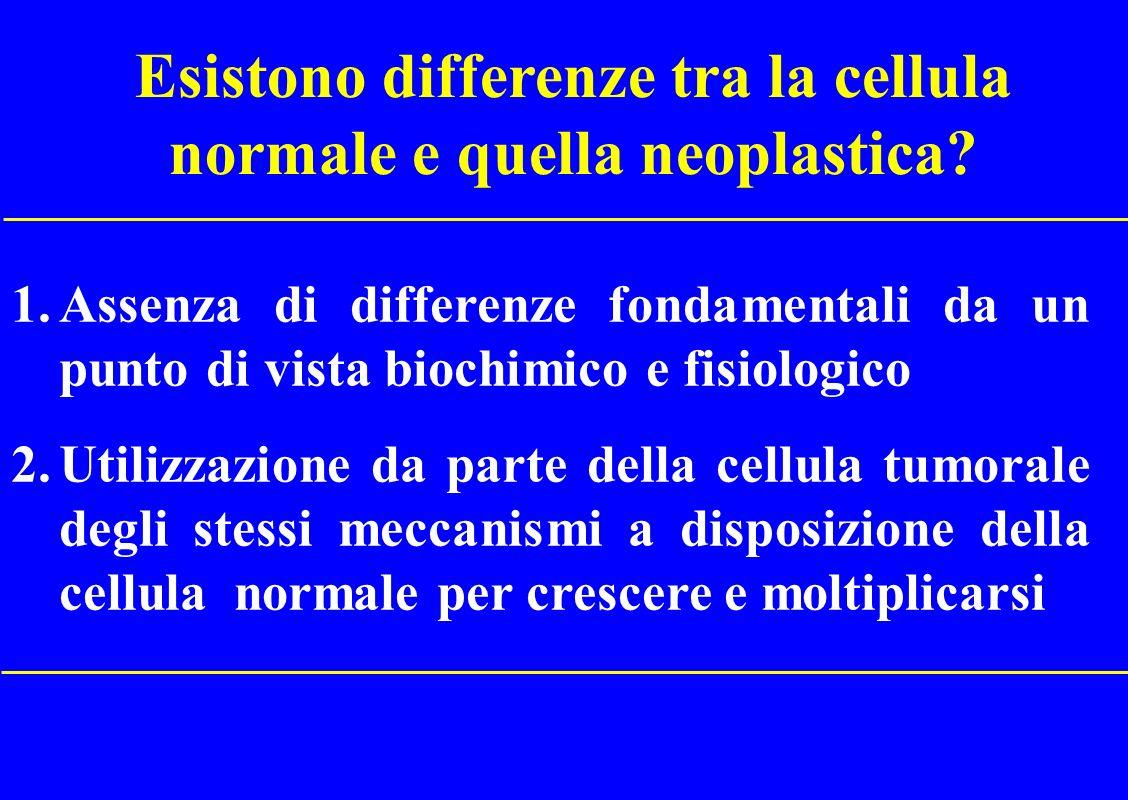 Esistono differenze tra la cellula normale e quella neoplastica
