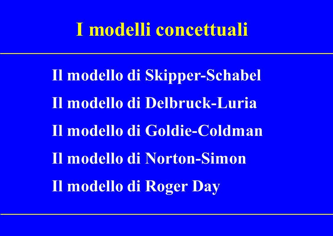 I modelli concettuali Il modello di Skipper-Schabel