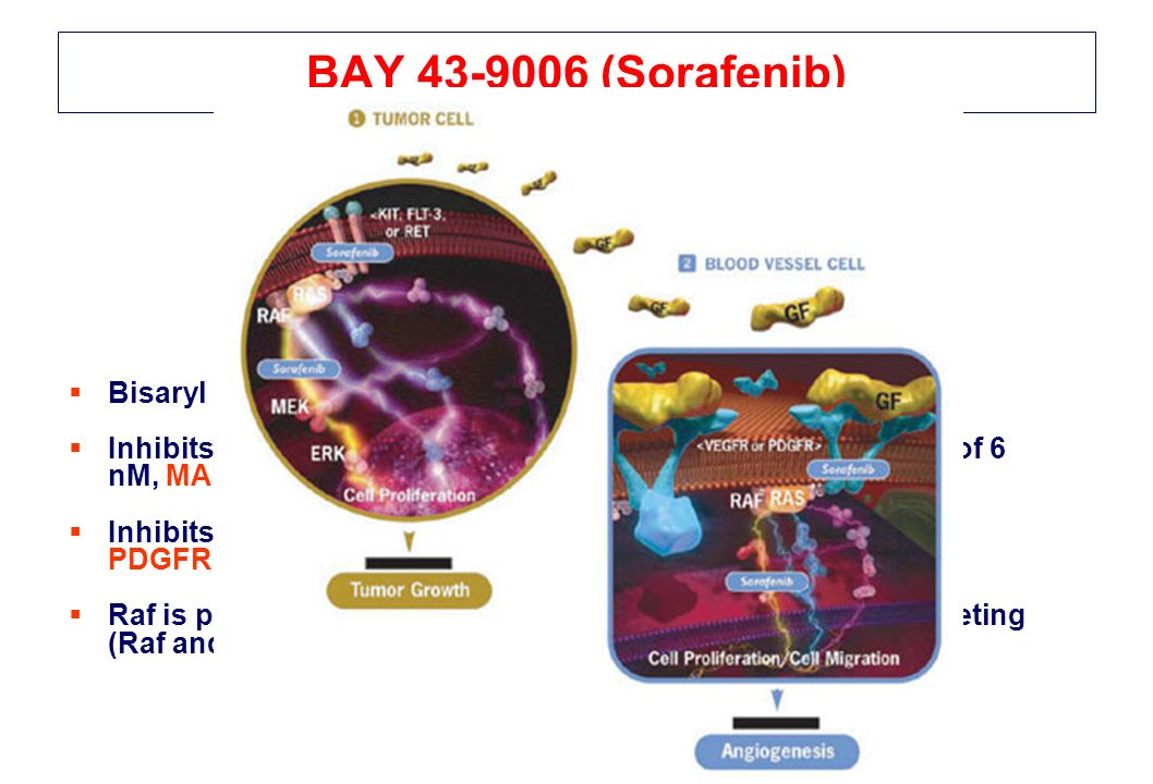 BAY 43-9006 (Sorafenib) Bisaryl urea, multiple targeted inhibitor.