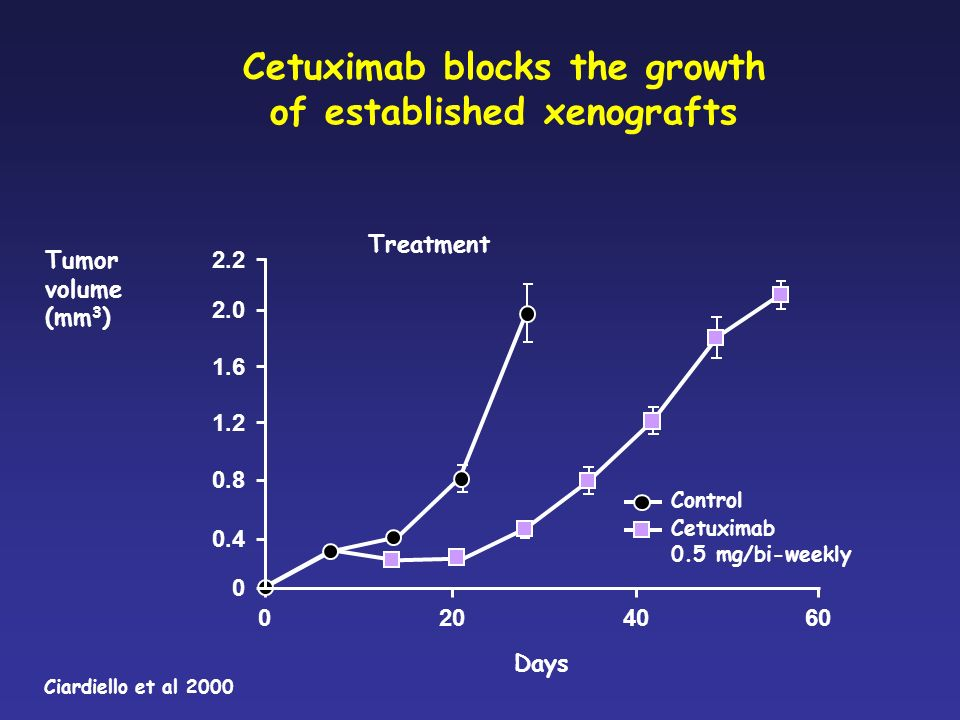 Cetuximab blocks the growth of established xenografts