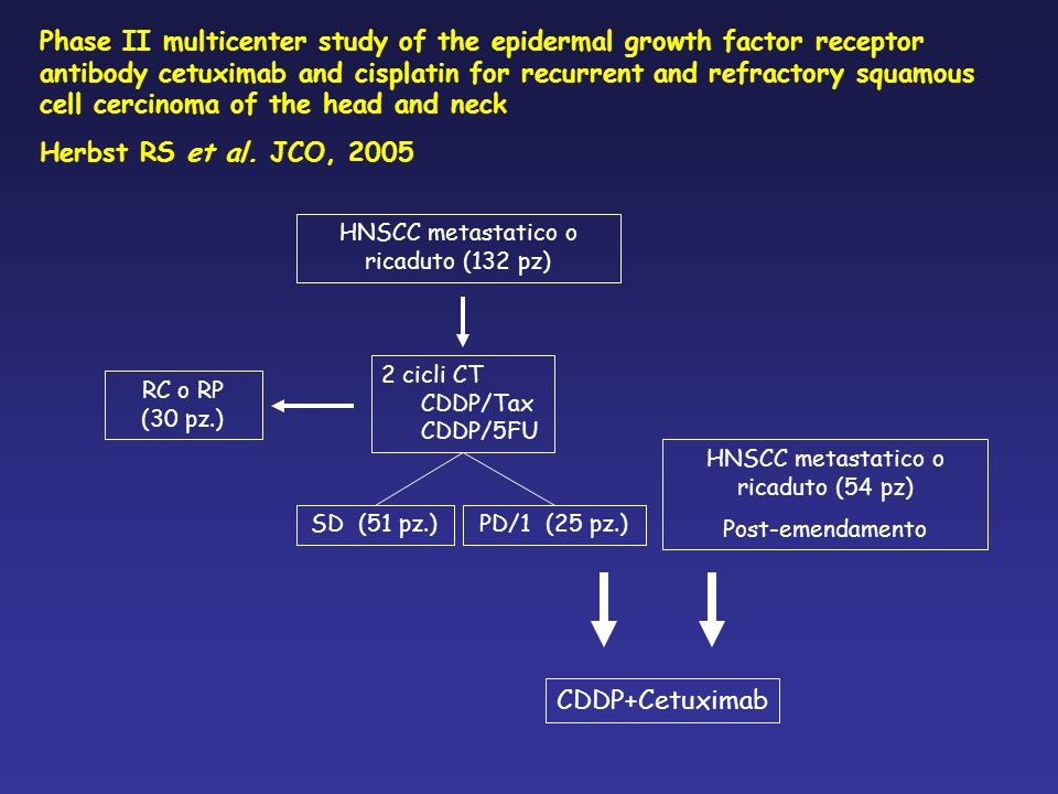 Phase II multicenter study of the epidermal growth factor receptor antibody cetuximab and cisplatin for recurrent and refractory squamous cell cercinoma of the head and neck