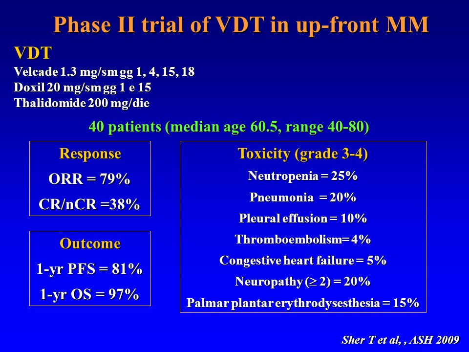 Phase II trial of VDT in up-front MM