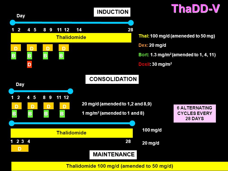 ThaDD-V INDUCTION CONSOLIDATION MAINTENANCE Thalidomide D D D D B B B