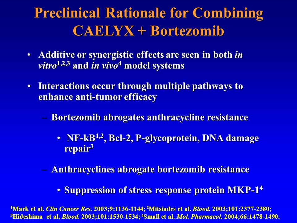 Preclinical Rationale for Combining CAELYX + Bortezomib