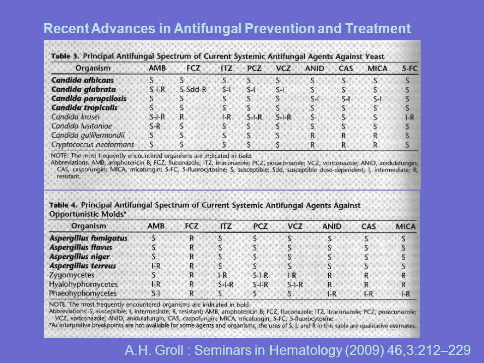 Recent Advances in Antifungal Prevention and Treatment