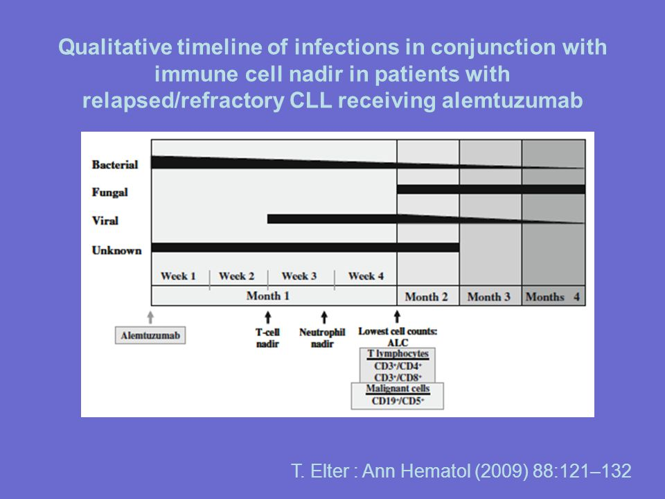 Qualitative timeline of infections in conjunction with