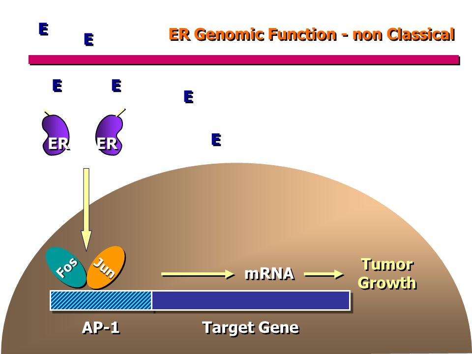 ER Genomic Function - non Classical