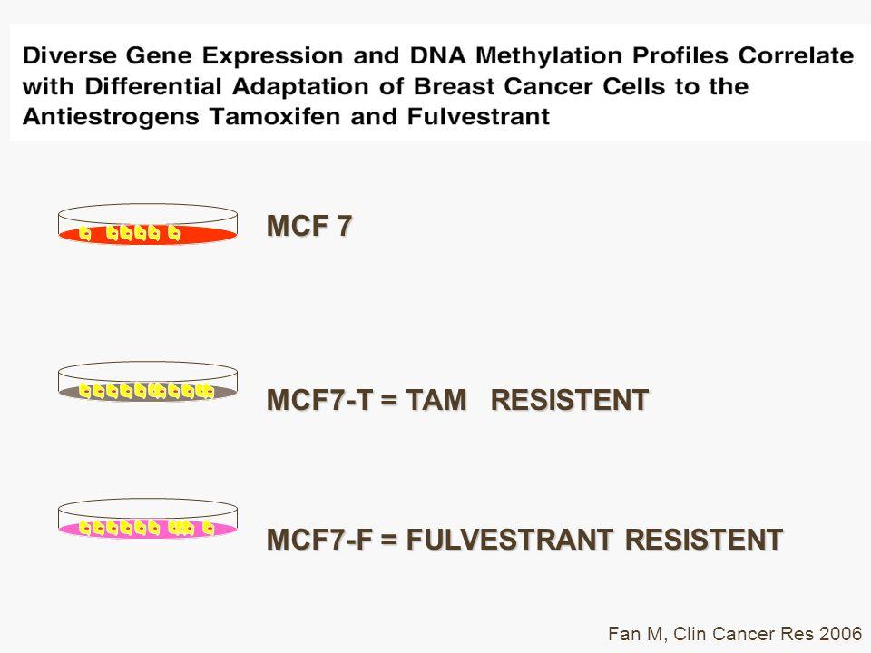 MCF7-F = FULVESTRANT RESISTENT