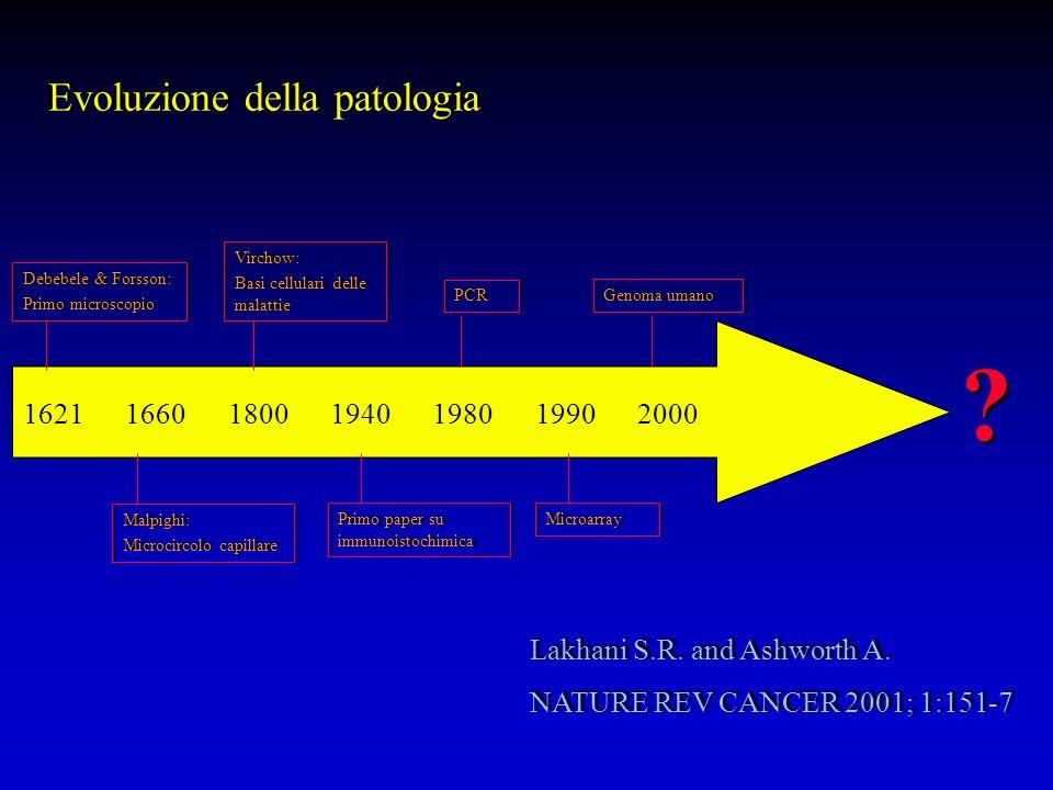 Evoluzione della patologia 1621 1660 1800 1940 1980 1990 2000